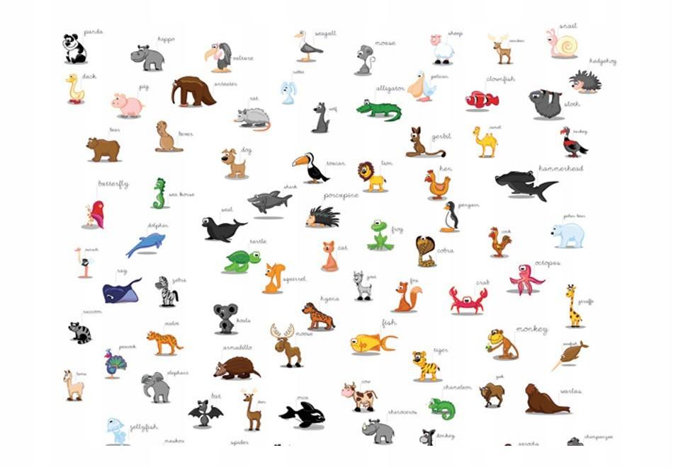 Fototapetas: Pažink gyvūnus
